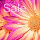 pink daisy canvas print, flower wall art, art nouveau flower, art flower abstract, flower pop art