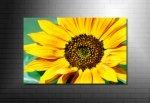 floral canvas, flower photo art, modern art flower