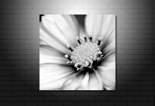 floral art print, digital floral art, floral canvas