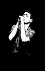ian curtis canvas art