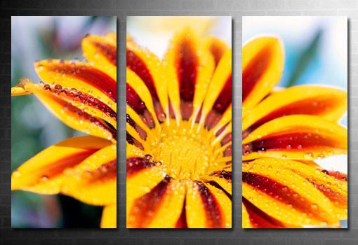 floral Art on canvas, flower art, original floral art