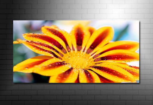 flower art prints and posters, flower pop art, flower wall art
