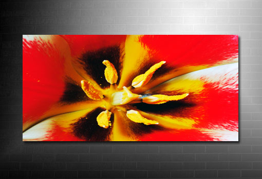 canvas floral print, flower wall art, art nouveau flower, art flower abstract