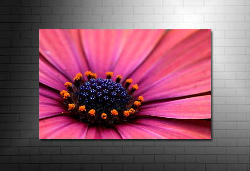 art flower work, flower art photos, flower canvas, floral art work