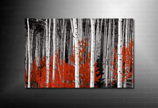 forest canvas print, red forest canvas art, landscape canvas wall art