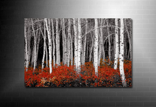 forest canvas art, red forest canvas, landscape canvas, forest wall art