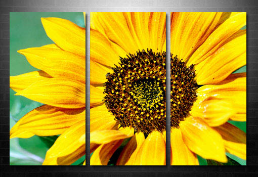 fine art floral print, floral original art, floral art print