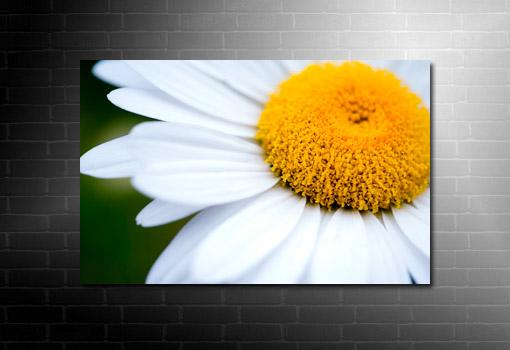canvas floral print, flower wall art, art nouveau flower, art flower abstract