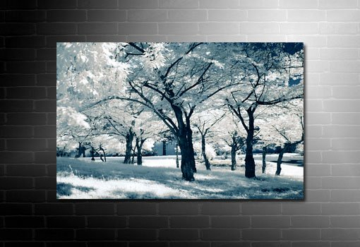 landscape canvas print, landscape art prints