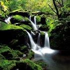 waterfall canvas, green canvas, landscape canvas, landscape wall art